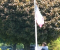 DAN FARBER  RAISING THE FLAG ON VETERANS DAY